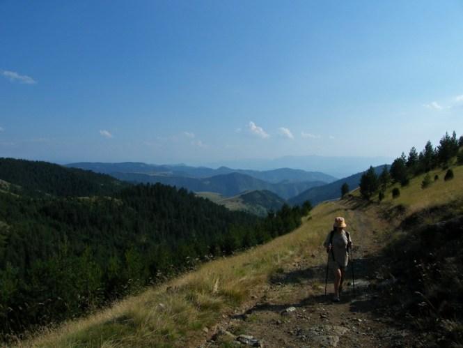 Пут на планини Озрен