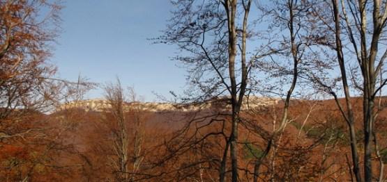 Поглед на Стражу са пута за Боту