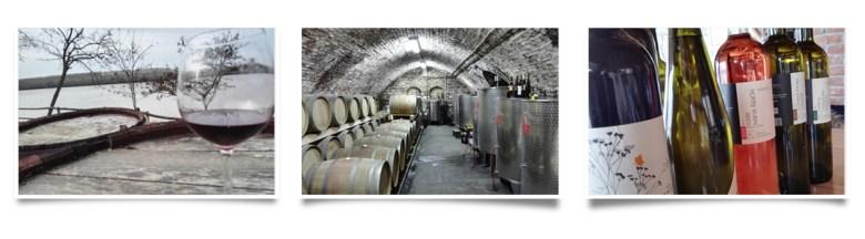 Winery Šijački, Banoštor