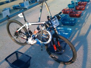 dorsal-tija-bicileta-triatlon