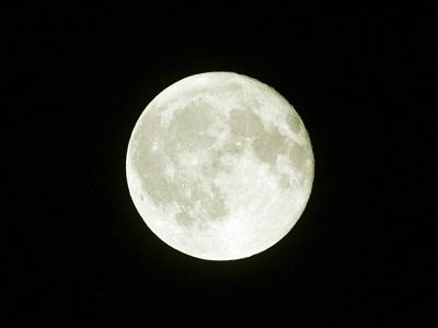 お月見って何