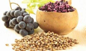 semi d'uva