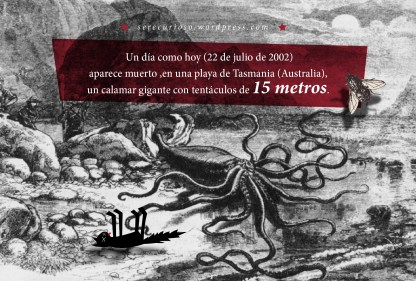 22 de julio de 2002: aparece muerto, en una playa de Tasmania (Australia), un calamar gigante con tentáculos de 15 metros.