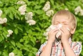 Primavera alle porte:come riconoscere le allergie grazie a un app