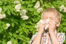 Primavera alle porte: come riconoscere le allergie grazie a un app