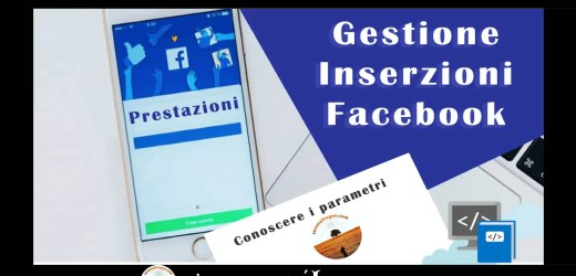 Gestione Inserzioni Facebook: PRESTAZIONI di una campagna