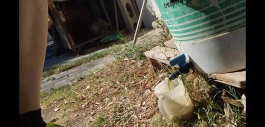 Domenica 19 Luglio – Estrazione concime liquido homemade
