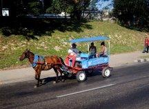 Carretera central, tirado por caballo 2013