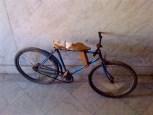 Cienfuegos, bicicleta 2010