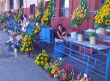 La Habana, mercado Cuatro caminos girasoles 2010