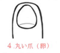 丸い爪(卵)