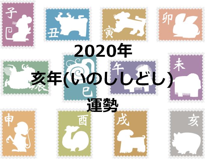 亥年 2020年 運勢