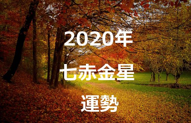 七赤金星 2020年 運勢