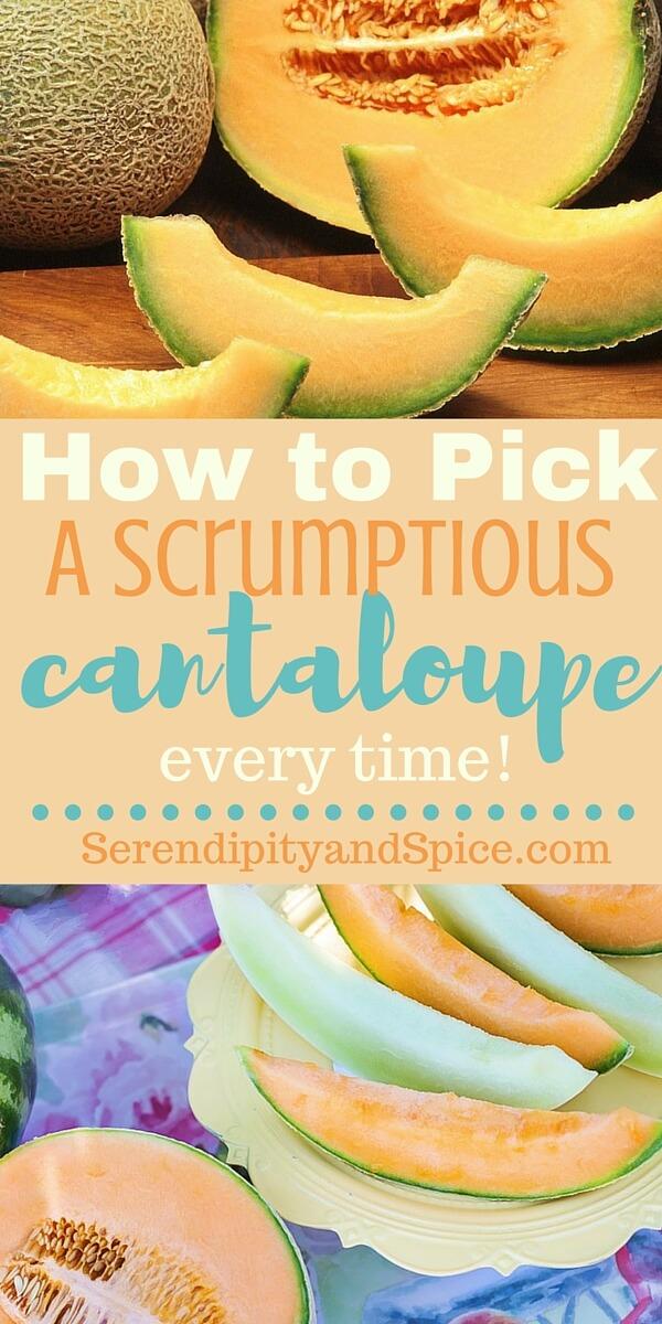 How to Pick a Cantaloupe