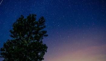 Perseid Meteor Shower ~ Peaks 11-13 August 2019 ~ The Biggie!