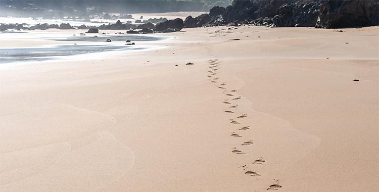 beneficios pasear caminar playa
