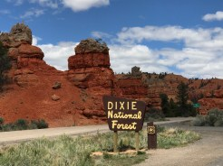 DixieRedRocks