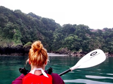 Kayaking Through The Jelly Fish