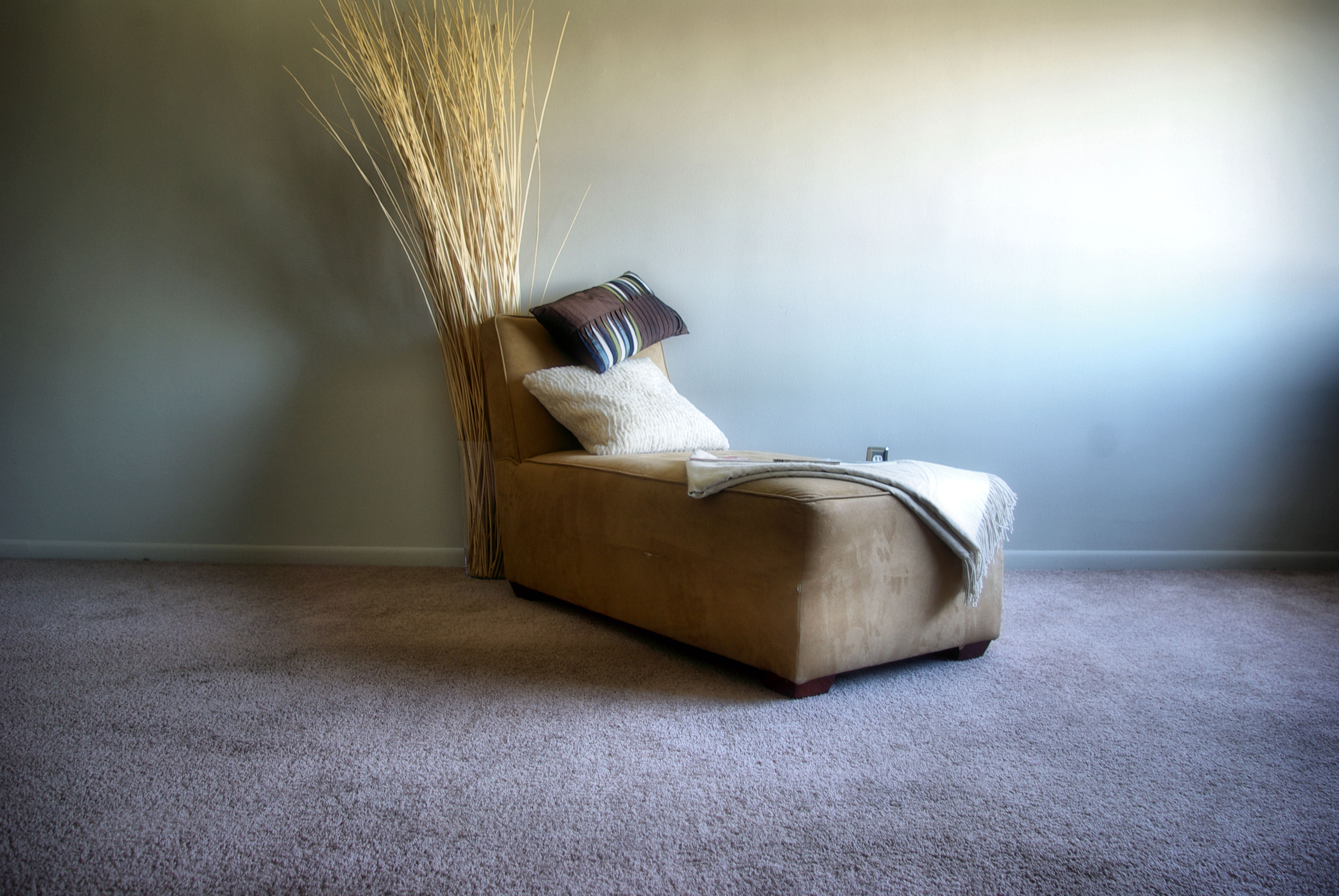 SPRING CLEANING IN A SNAP: Clean the Carpets