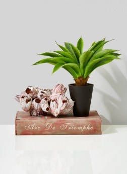 fake-aloe-plant-in-pot_pfts-063_mag