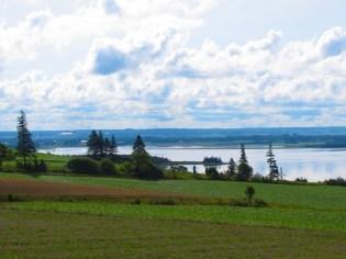 View toward the bay