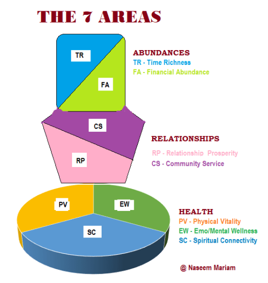 Serene Wellness 7 Areas of Life