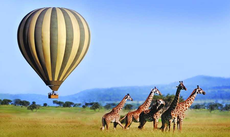 Discover the Top Spots in Serengeti