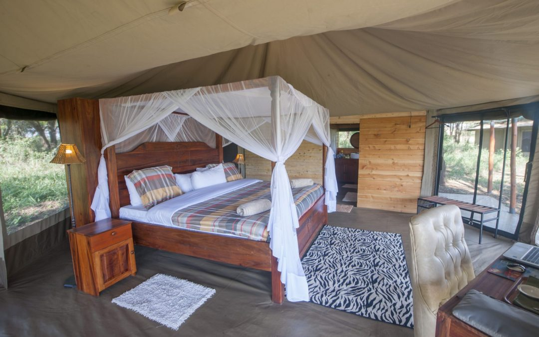 Lodge, Tent, Tented Camp: Your African Safari Accommodation 101