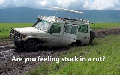 Feeling Stuck in the Muck?