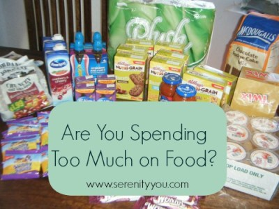 are you spending too much money on food