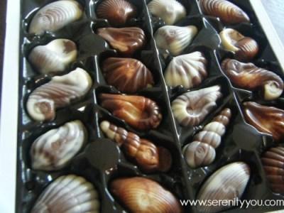 Guylian 250g Sea Shell Chocolates