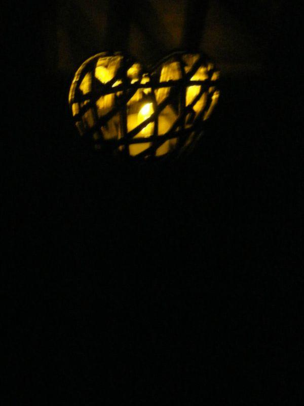 garden light 4