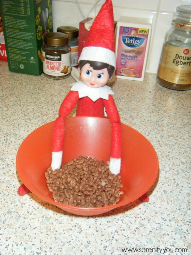The Elf on the shelf 8
