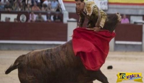 ΣΟΚΑΡΙΣΤΙΚΟ! Ταύρος έβγαλε νοκ-άουτ τον ταυρομάχο (ΠΡΟΣΟΧΗ ΣΚΛΗΡΕΣ ΕΙΚΟΝΕΣ)