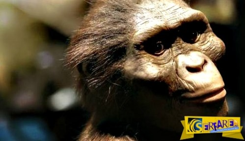 Αυστραλοπίθηκος Λούσι: Το νέο doodle της Google!