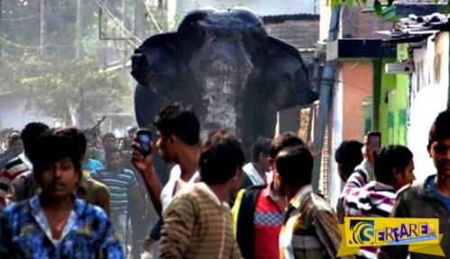 Ελέφαντας σπέρνει τον πανικό σε πόλη της Ινδίας καταστρέφοντας 100 σπίτια