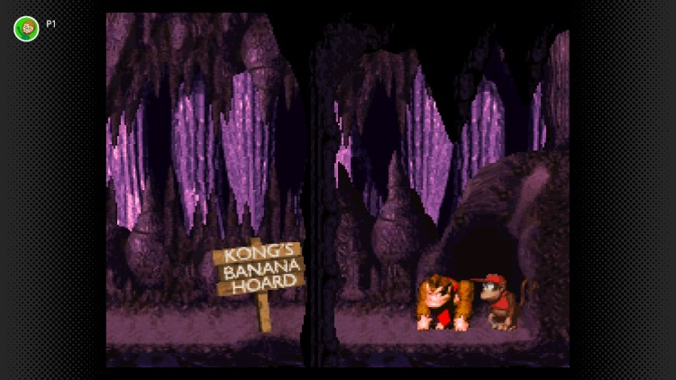 Donkey Kong Country NOT THE BANANAS!