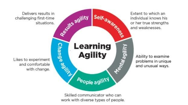 Fig.1 The Learning Agility model of Korn/Ferry