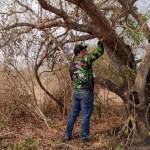 Claudinei alerta o descaso com a fauna nas queimadas do Pantanal pelo Governo de MT