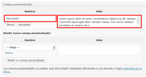 SEO on-page en WordPress - Campos Personalizados