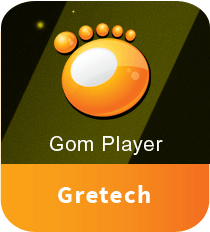 GOM Player Plus Crack 2.3.37.5299 with License Key