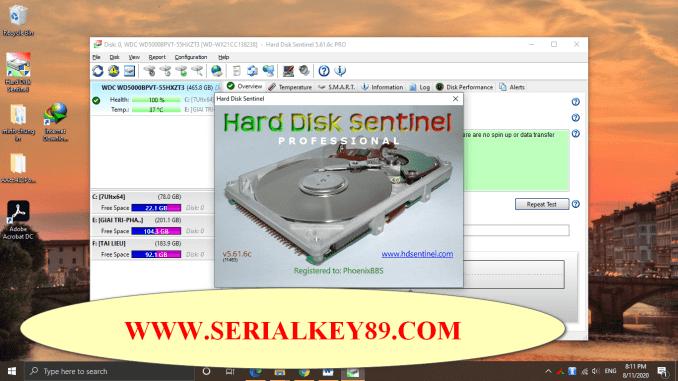 Hard Disk Sentinel Pro 5.61.6 Beta