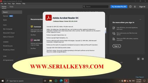 Adobe Acrobat Reader DC v2021.001.20142