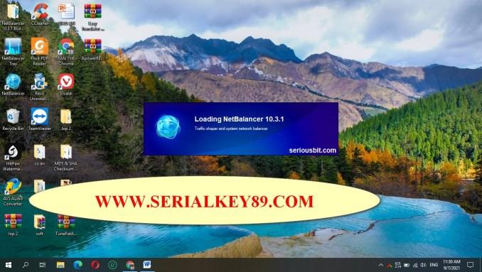 NetBalancer 10.3.1 Build 2805