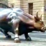 Why did Priyanka Karki held Charging Bull's testicle?