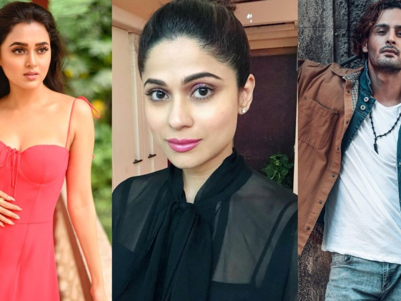 Top 5 Contestants of Bigg Boss 15 by Ormax Media, Bollywood Hindi Movies, Web Series, TV Serials, Cast, Trailer, Release Date, Actor, Actress, Songs, IMDb
