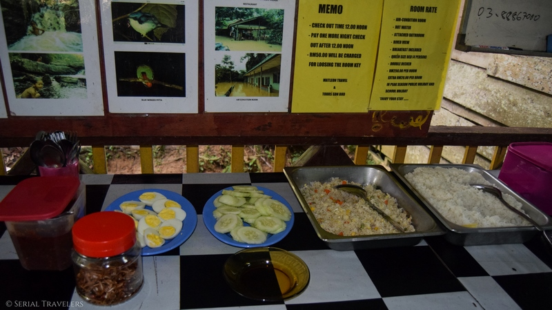 serial-travelers-jungle-taman-negara-malaisie-guesthouse-nasi-lemak