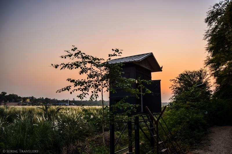 serial-travelers-india-delhi-rajasthan-agra-sunset-free-view
