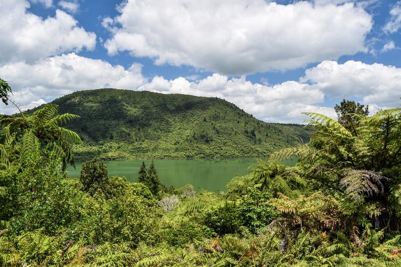 serial-travelers-nouvelle-zelande-rotorua-incontournable-gratuit-lac-vert-green-lake-rotokakahi