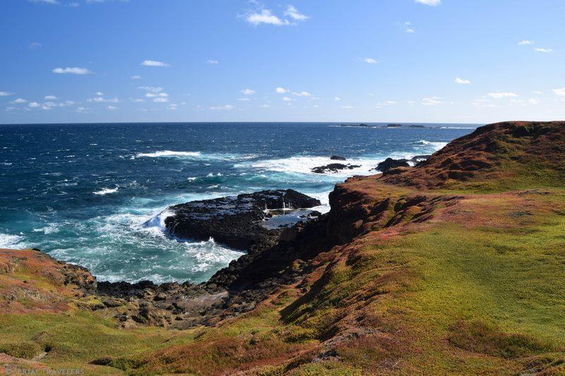 serial-travelers-australie-roadtrip-van-phillips-island-7 (Copier)